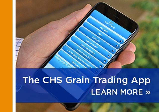 Login to Online Trading