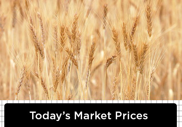 todays-grain-prices